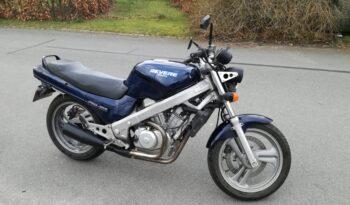 Brugt Honda NTV 650 1989 2