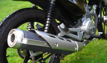 Brugt Yamaha YBR 125 2011 full