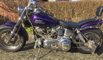 Brugt Harley Davidson FL 1200 1967 2