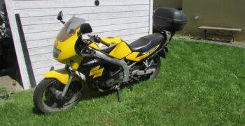 Brugt Suzuki GS 500 1999 4