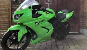Brugt Kawasaki Ninja 250 R 2008 2