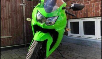 Brugt Kawasaki Ninja 250 R 2008 full